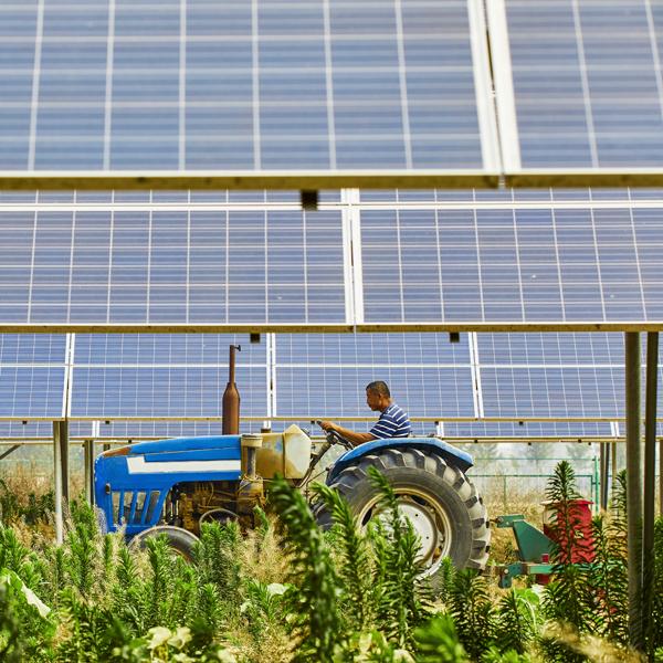 pannelli solari e agricoltura