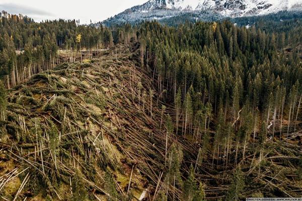 devastazione della tempesta