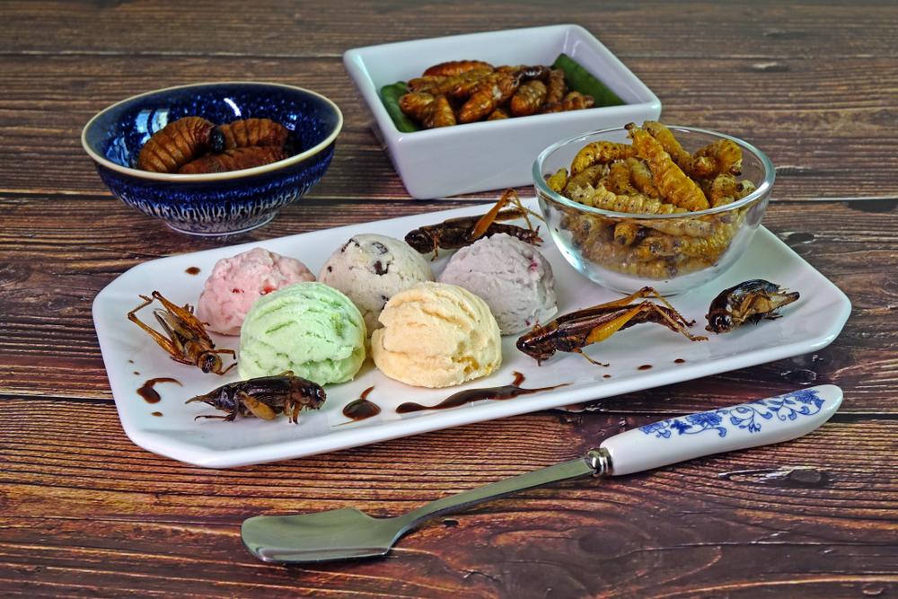 insetti commestibili con gelato